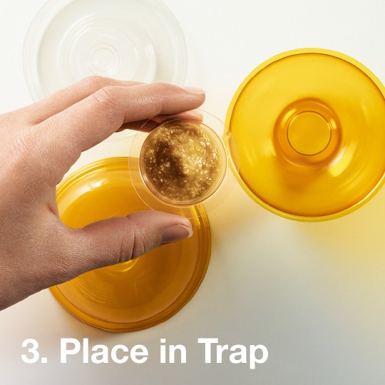 eek-o | The Natural Fruit Fly Trap Solution for Your Home